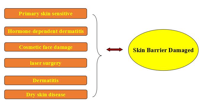 Факторы, которые повреждают кожный барьер