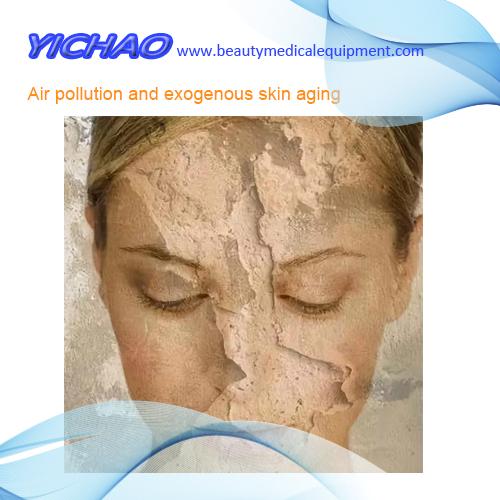 Загрязнение воздуха и экзогенные старение кожи